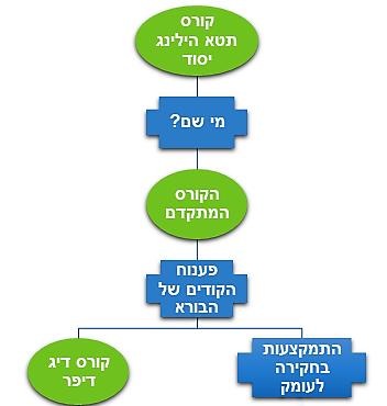 תרשים צעדים ראשונים (2)